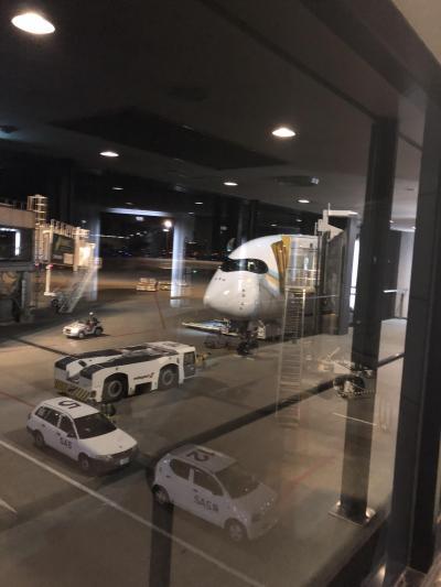 2018マレーシア航空で行くバリ島THE BALE・クアラルンプール8日間 1日目~2日目(移動~ホテル着)