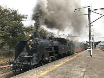 秋の乗り放題切符で行ってきた。目的なしのぶらり鉄道乗りつぶしの旅