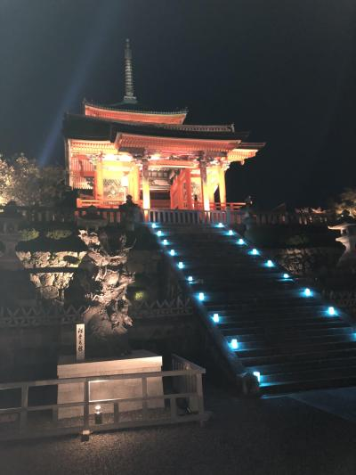 清水寺の秋の夜間拝観に初めて行ってみました