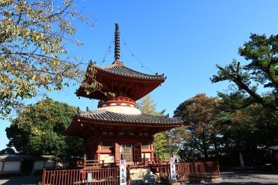 川越の街歩き~喜多院から川越城本丸御殿、氷川神社、蔵の街