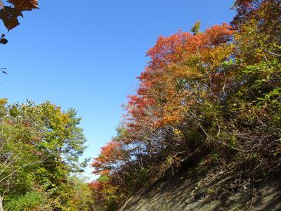 岩沢~夏油高原トレイルツアー