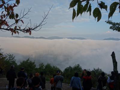 雲海に沈む竹田城。立雲峡まで上ったのですが,雲海だけで,お城は見れませんでした。