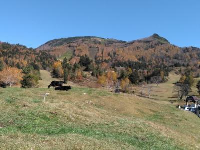 紅葉を求めて松川渓谷へ。山田牧場露天風呂最高!