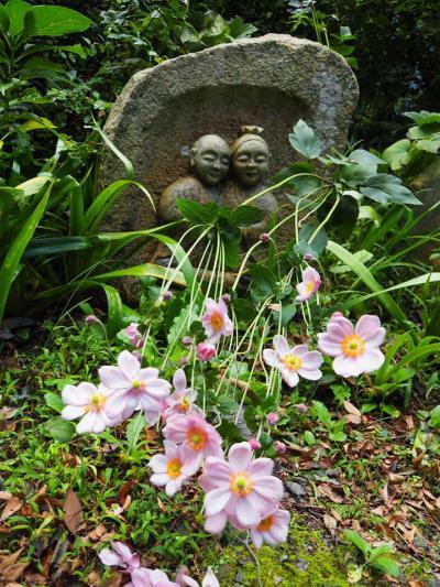 阿弥陀寺 皇女和宮さまの御位牌を祀る。徳川家ゆかりの地。ご住職の琵琶を是非お聞きしたかった・・・!