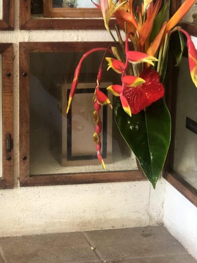 従兄弟の一周忌・お墓参り 10度目のハワイ