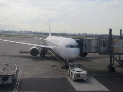 沖縄2018秋(1)JALで那覇空港へ向かっています