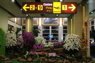 DPS→NRT、GA880、Y、搭乗メモ。遅延に搭乗口変更等、日本人は日本語しか理解不能?