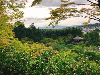 京都 ★ 清水寺と銀閣寺旅行