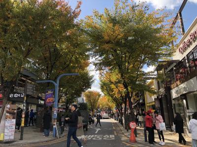 有休いらず! 20時間滞在のソウルで一足早い紅葉を。