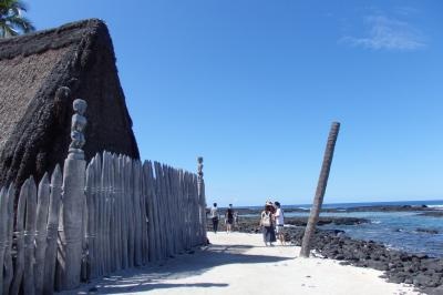 2018.10 ハワイ島(3)ツアーで一周ハワイ島1 プウホナウ国立公園でウミガメ!他