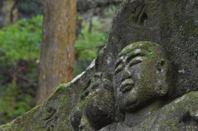 大山参りと、廣澤寺温泉