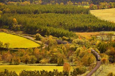 秋の北海道、道央地方を巡る旅 ~JR石勝線・根室線の紅葉を見に新得・増田山に訪れてみた~