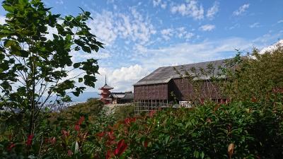秋の京都、平安神宮~清水寺~東福寺を歩く御朱印巡りの旅