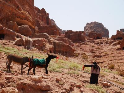 """ただいま!ヨルダン女子旅 Part 2~日帰りでも楽しめる!バラ色に輝く""""死者の街""""ペトラ遺跡編~"""