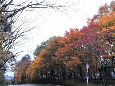 草津(群馬県草津町)の紅葉を見に行ってきました。