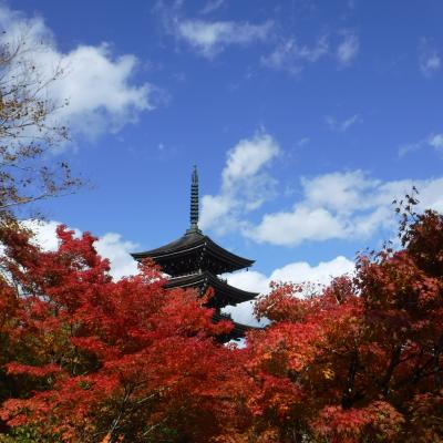秋の定義山ドライブ