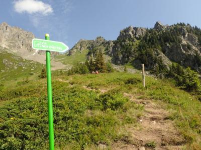 ヨーロッパ遠征山行Part5(プチハイキング~帰国)
