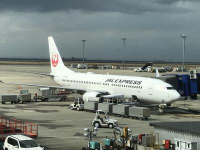 名古屋 ① JAL3083便(ボーイング737-800)搭乗記★2018年3月にリニューアル&海外へ行かなくても入れるラウンジへ、成田空港第2ターミナルの国内線利用で日本航空のラウンジ『サクララウンジ』に初潜入! 無料の食事やアルコールもあっていいかも♪ プライオリティパスで入れる『TEIラウンジ(ビジネス&トラベルサポートセンター)』、『IASS EXECUTIVE LOUNGE 2(アイ・エー・エス・エス エグゼクティブ ラウンジ2)』