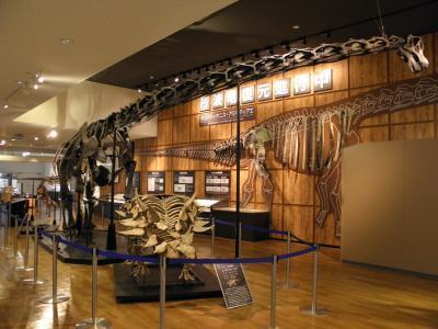 丹波竜化石工房に行ってきました!