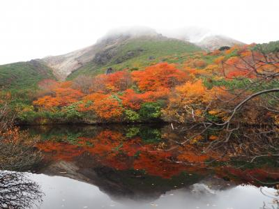 紅葉の那須 姥ヶ平と茶臼岳