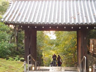 紅葉前の京都食べ歩き④高台寺で夕陽を眺める☆