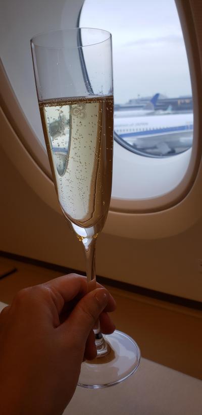 2泊3日バンコク旅(ビジネスクラスとファーストクラス利用マンダリンオリエンタル宿泊)