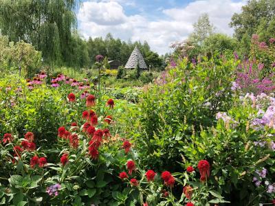 2018.8 北海道ガーデン街道花巡り【2】…イングリッシュガーデンの上野ファームは花盛り