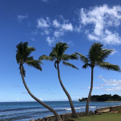ハワイ旅行2018 滞在3日目