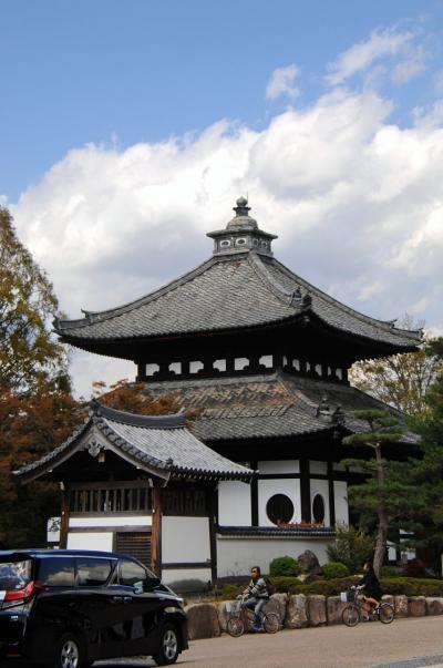 日赤病院に検診同行~東福寺へ紅葉の下見で。