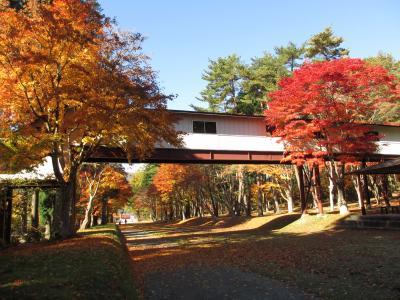遠野郷八幡宮の紅葉と散策あちこち