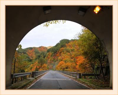 Solitary Journey[1960]紅葉真っ盛りの西中国山地を走る~♪<八幡高原・標高1346mの恐羅漢山・餅の木林道>広島県山県郡