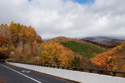 山の上は雪化粧紅葉はもう終わりかな?