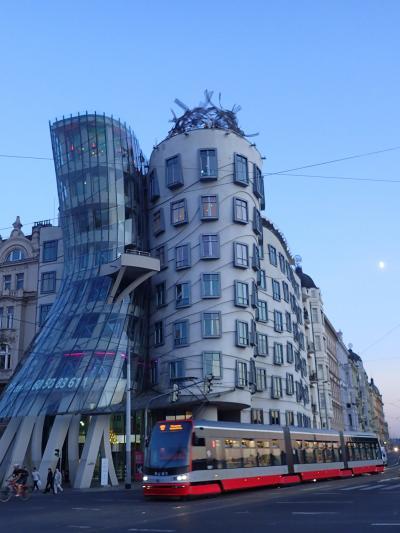 11日間で中欧4か国周遊◆Day4◆プラハ市内観光(プラハ城→ブラックライトシアター)