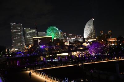横浜スマートイルミネーションと横浜税関一般公開