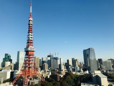 東京タワー独占