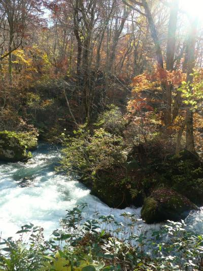 chokoっと散歩~晩秋の十和田湖巡り・錦秋は通り過ぎたけれどもそれなりにきれいな風景にうっとり~