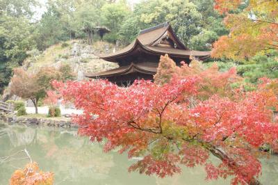 秋の虎渓山永保寺