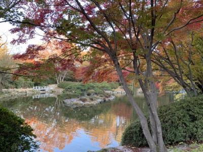 2018年11月慶州の紅葉を楽しむ旅②
