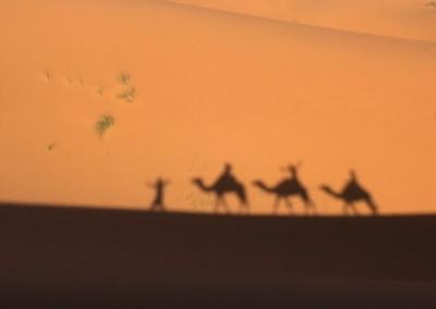 モロッコ旅 -No.3 カオスの世界、フェズ