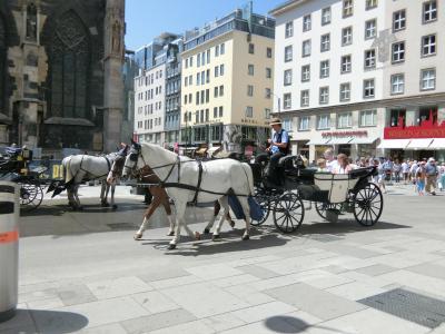 ウィーン【シュテファン大聖堂・馬車】