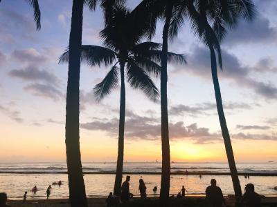 2018.11 ちょっとしたお祝い事で初ハワイ!観光編