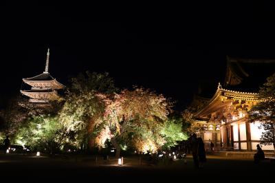 京都 東寺 ライトアップ
