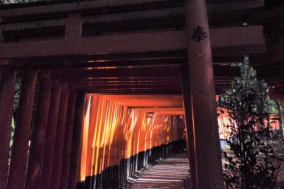 巡るJapan 京都 ジジと孫の二人旅 part4  伏見稲荷