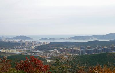 中国東北地方4泊5日(3)【旅順】113年前と変わらぬ旅順港を一望する
