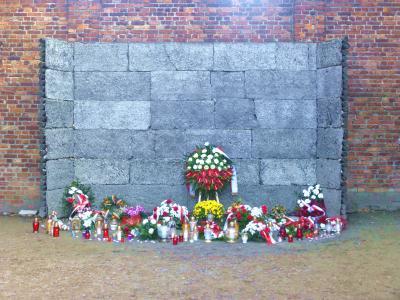 ポーランド5・・負の世界遺産、アウシュビッツ・ビルケナウ強制収容所