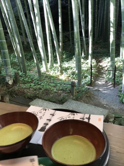 東京 横浜 鎌倉 秋の旅 2