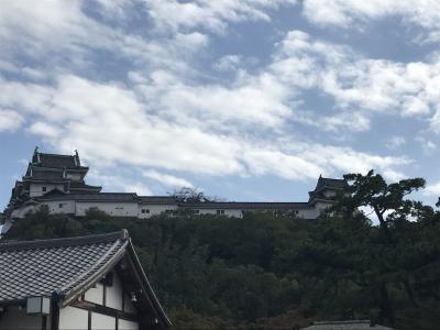 和歌山城に行ってきた(^^♪