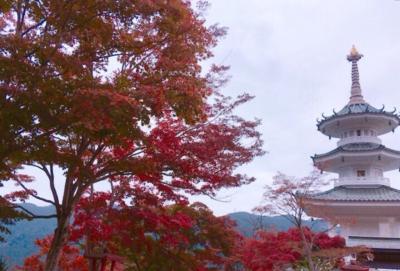 鳥居観音の紅葉とぽれぽれランチ!