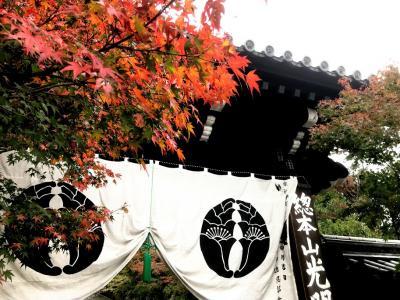 2018年 京都 光明寺の紅葉を一足お先に!