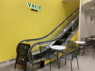 2018年11月9日 金曜日 大阪日本電気街 Capsle Hotel Valie
